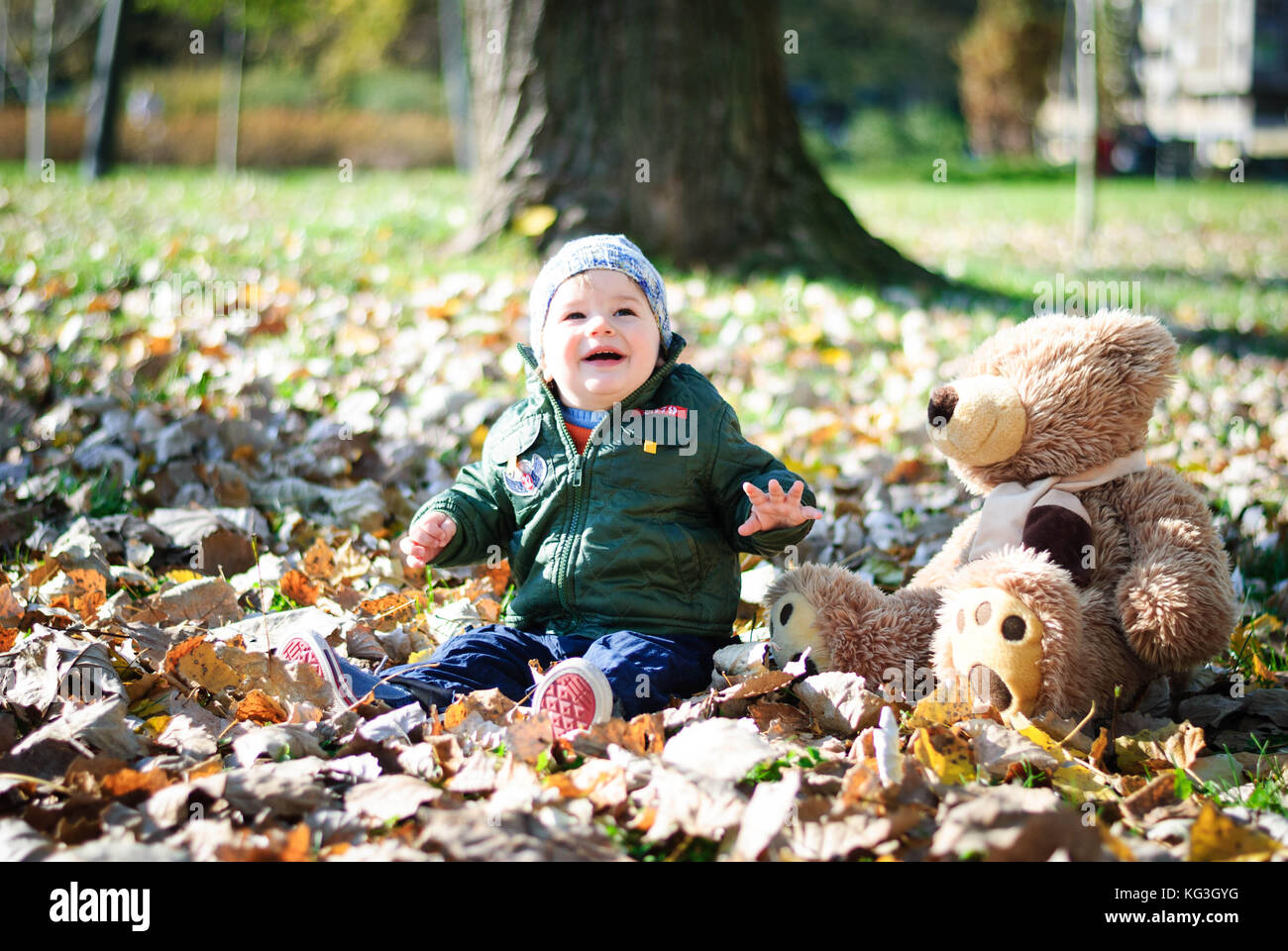 Little boy explores the world of groping something on a tree in the woods - Stock Image