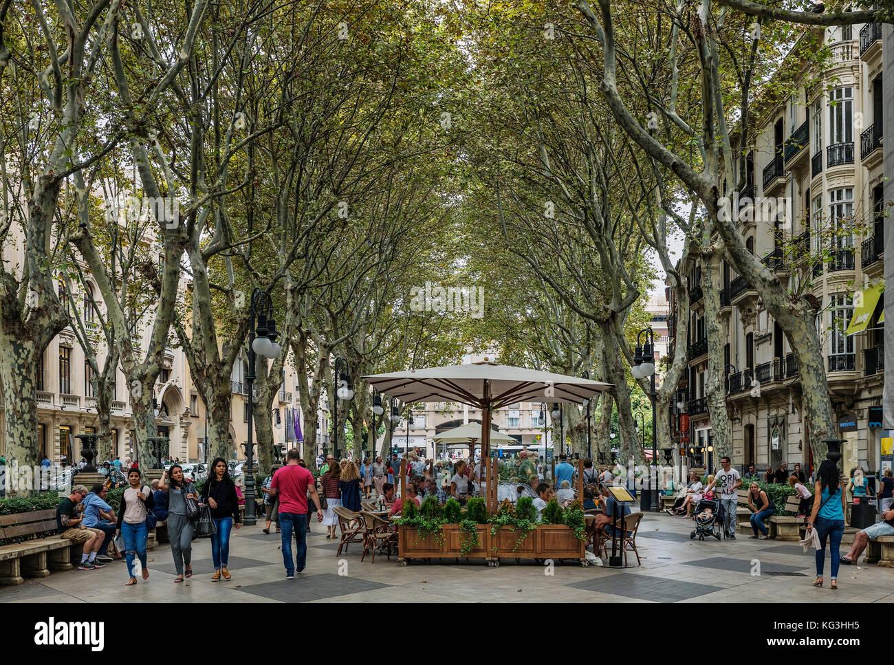 Passeig des Born, Palma de Mallorca, Majorca, Spain. - Stock Image