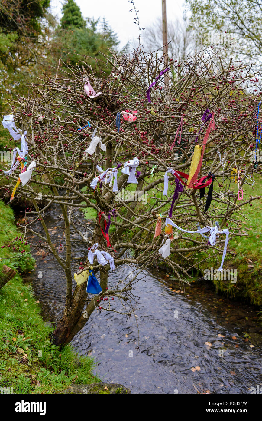Fairy tree at an Irish Holy Well covered in ribbons and gifts for the little people. - Stock Image