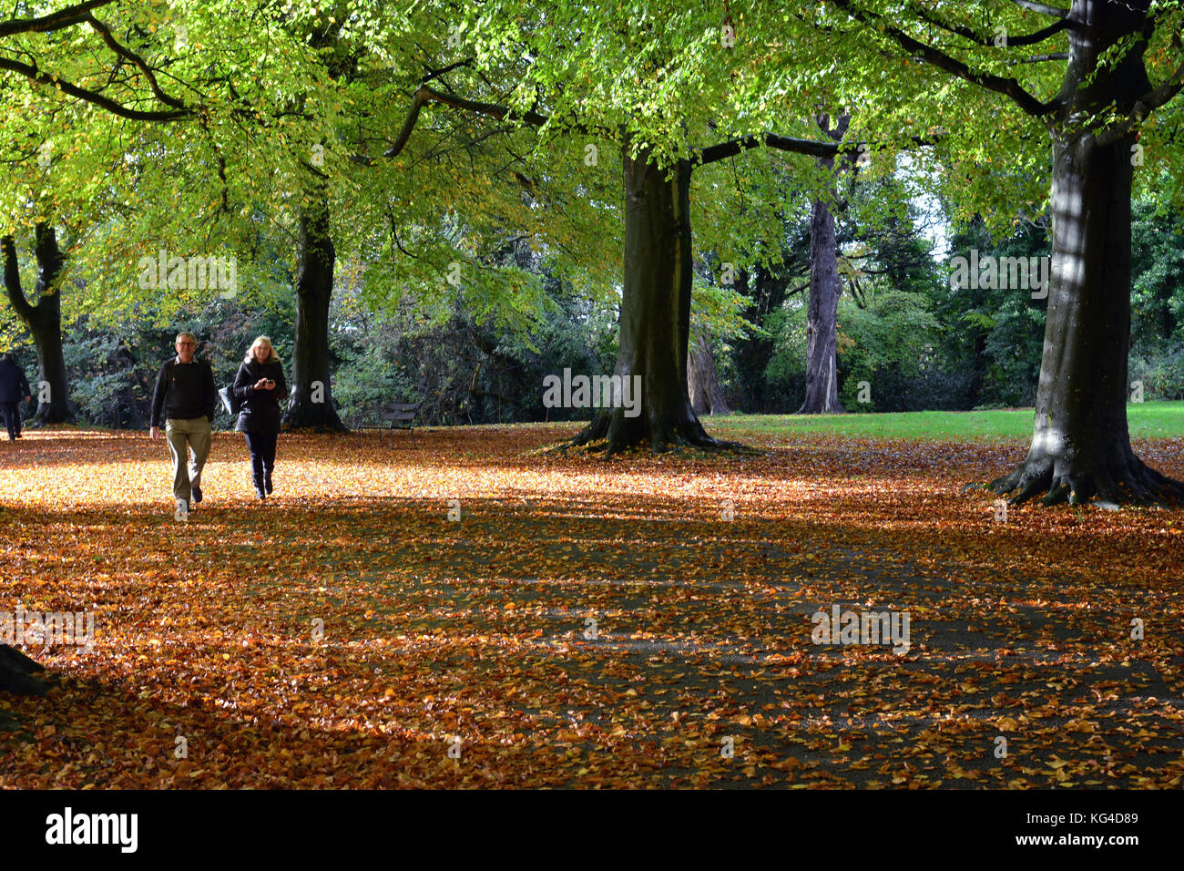 Bristol, UK. 4th November, 2017. UK Weather. November stroll along the Promenade in Clifton Bristol on a cold and - Stock Image