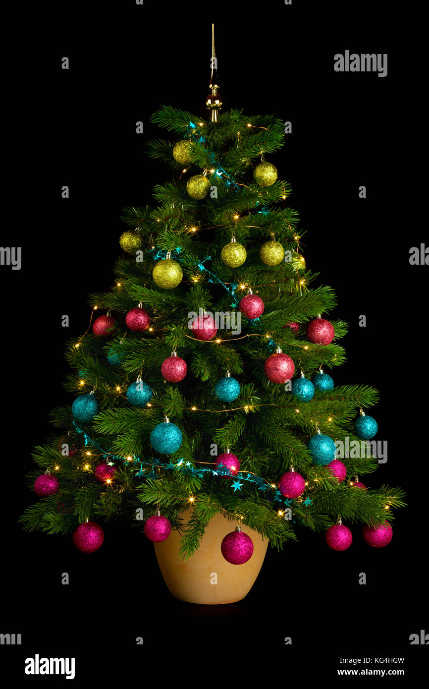 Potted Christmas Tree With Green Pink Blue And Purple Baubles On Stock Photo Alamy