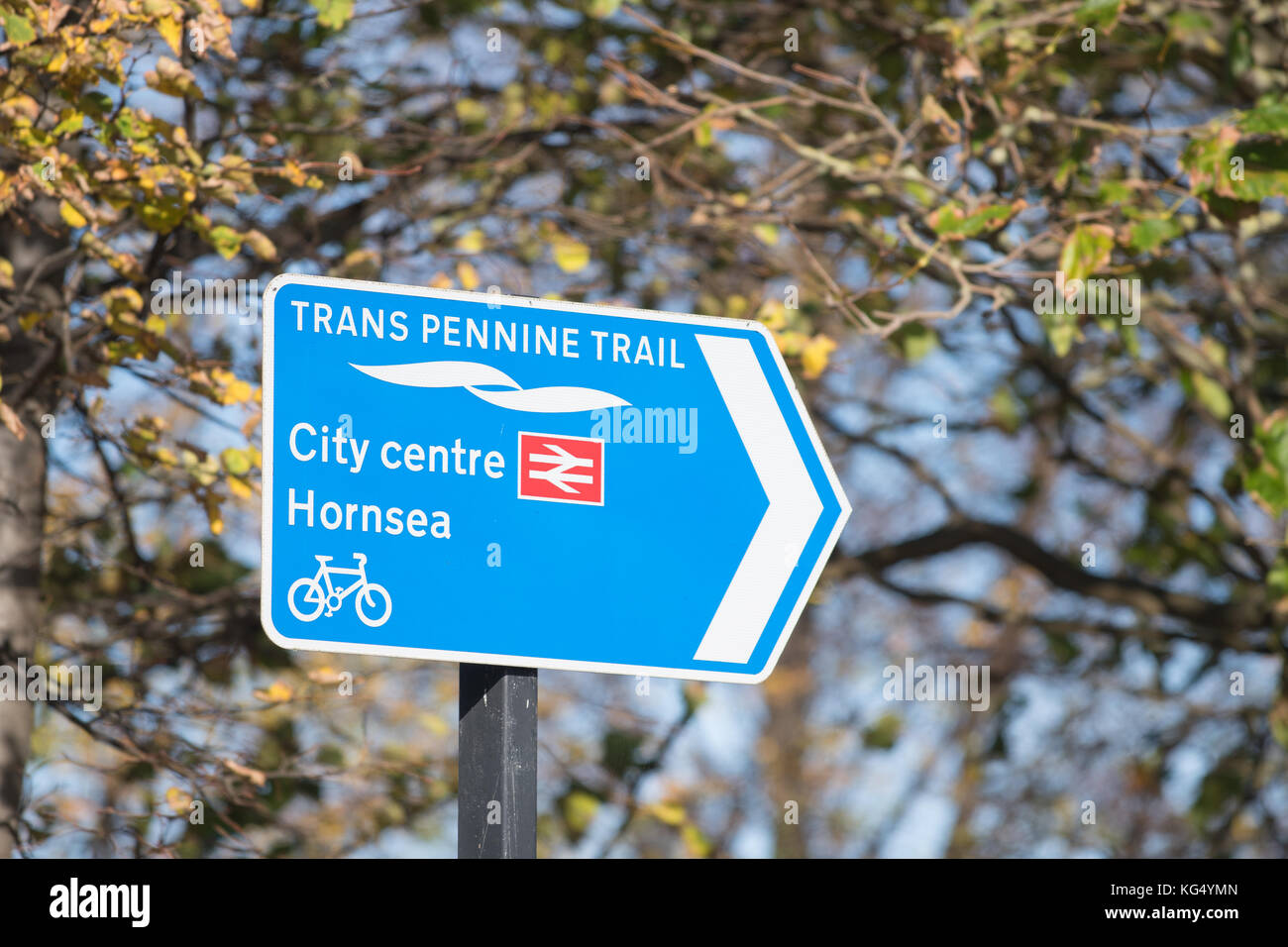 Trans Pennine Trail  cycle trail sign in Hull city centre, England, UK - Stock Image