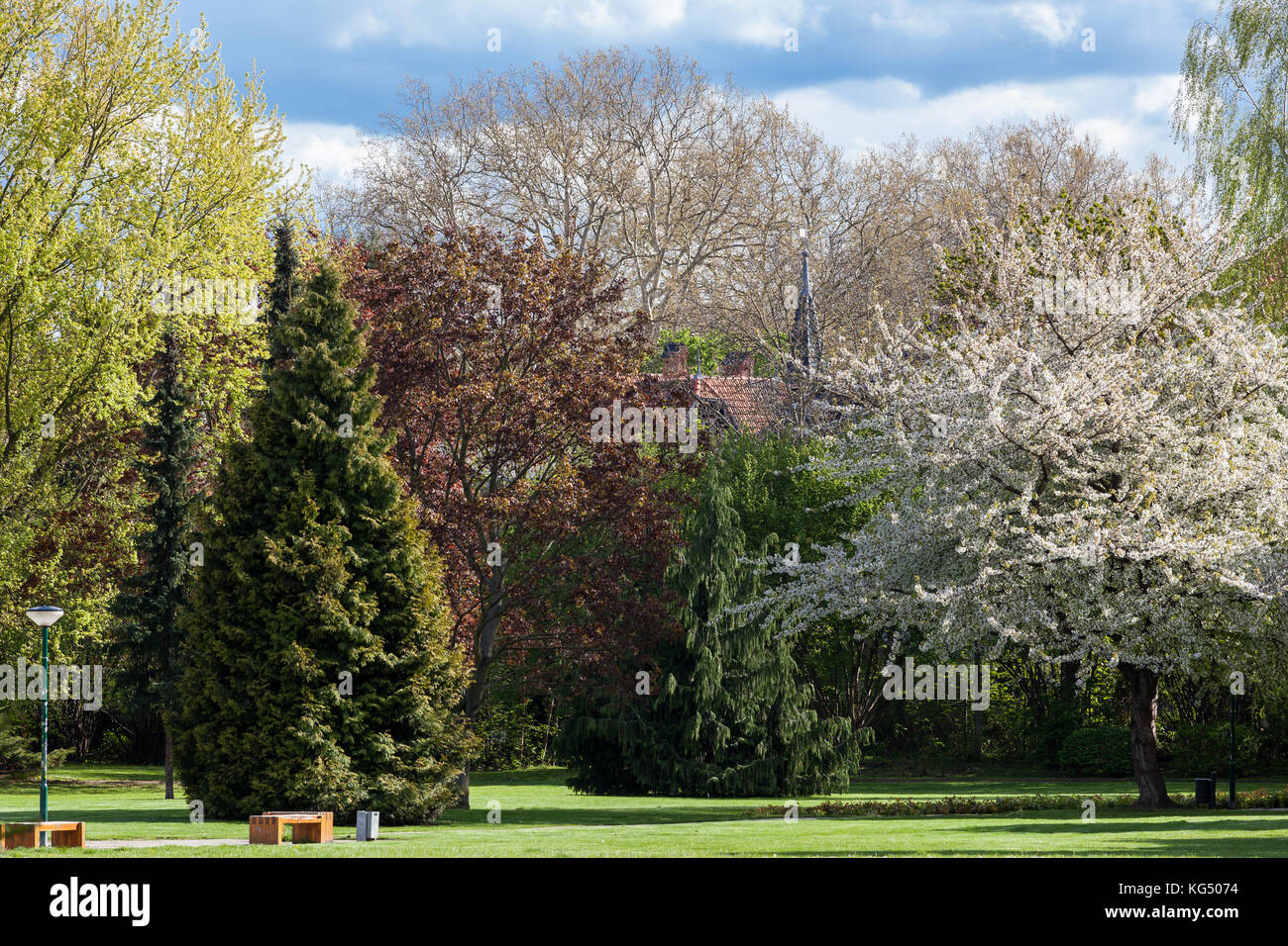 Parkanlage Quedlinburg blühende Landschaft - Stock Image