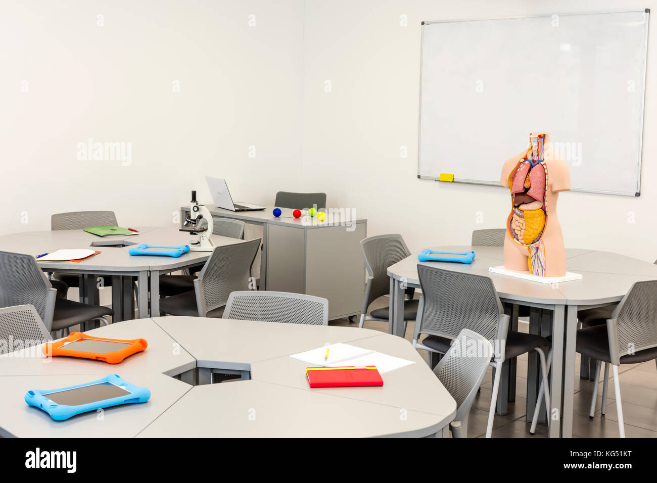 Modern classroom interior, with round tables. Anatomy model and the white board in the background - Stock Image