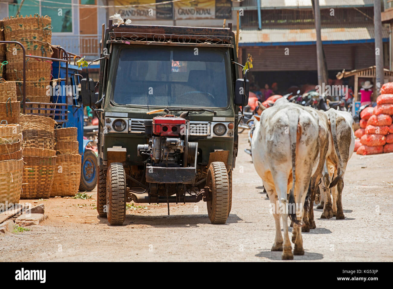 Chinese tractor and cows in the town Aungban, Kalaw Township, Taunggyi District, Shan State, Myanmar / Burma Stock Photo