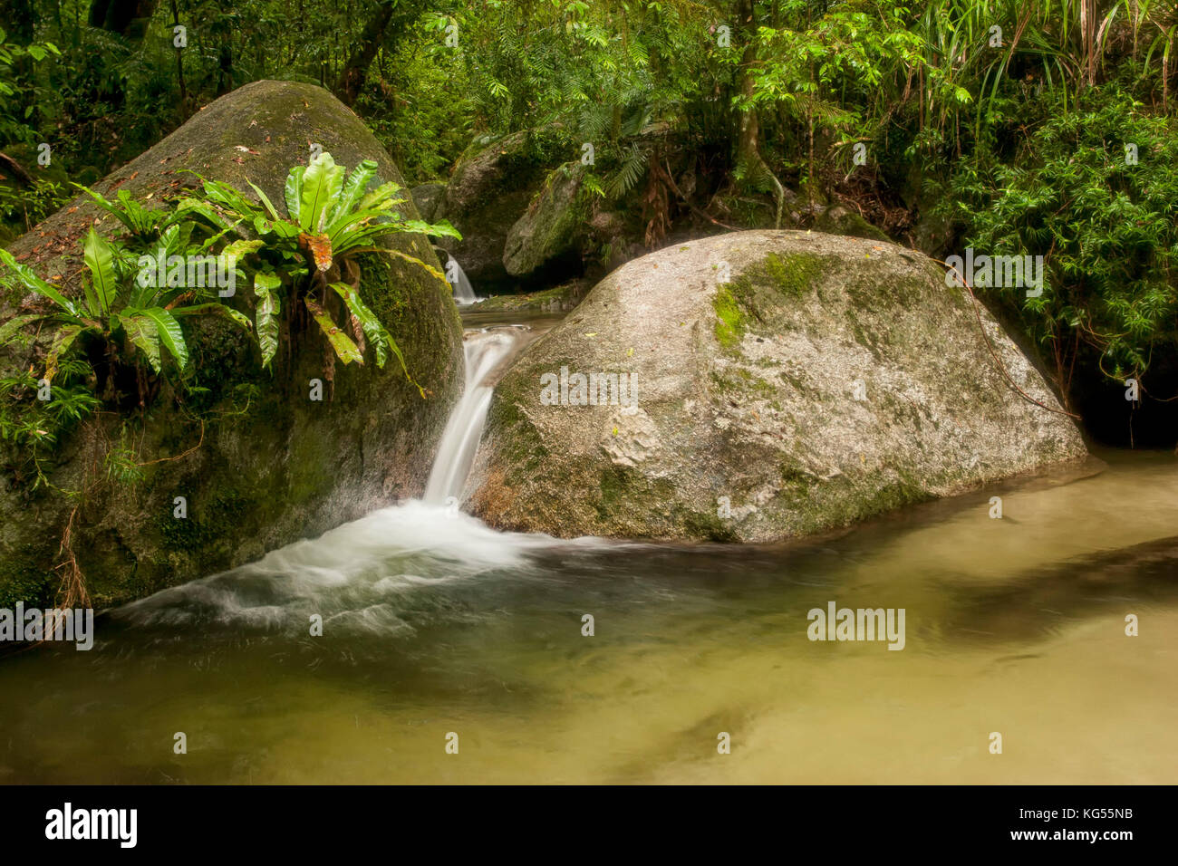 White water between two large boulders in stream, mossman gorge, Australia - Stock Image
