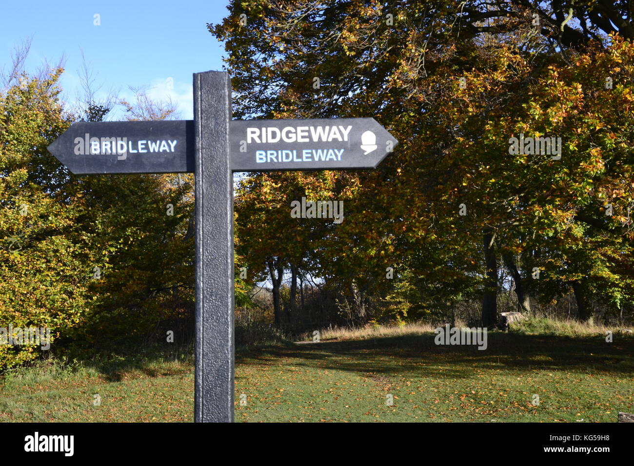 Ridgeway Bridleway sign, on The Ridgeway Path, Whiteleaf Hill. Whiteleaf Woods. Autumn, Chilterns, UK Stock Photo