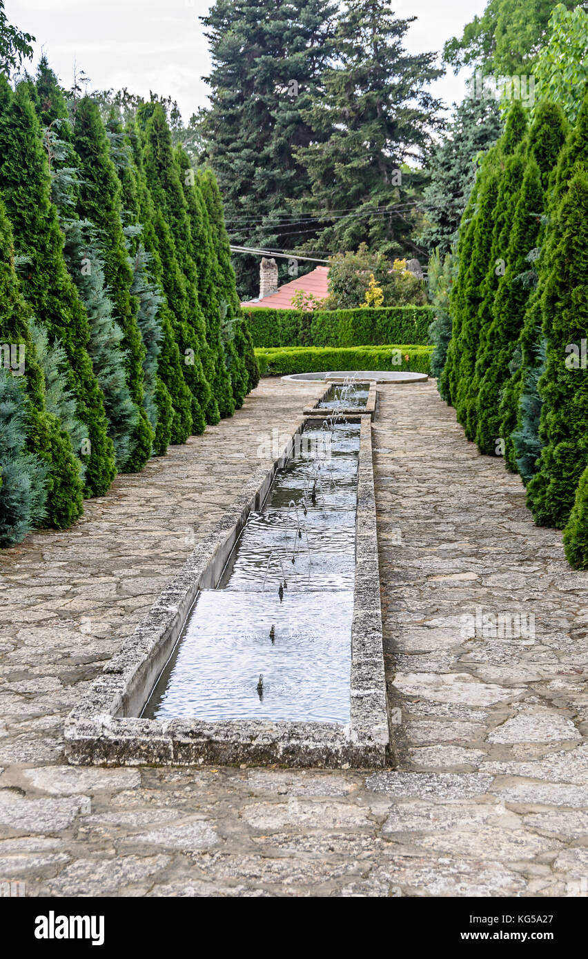 Botanical garden with green pine trees and water decorative Stock ...