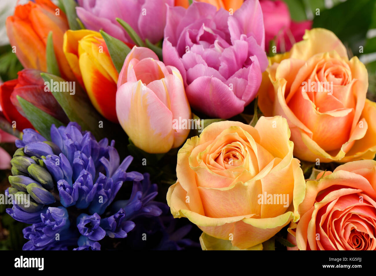 Coloured spring bouquet - Stock Image