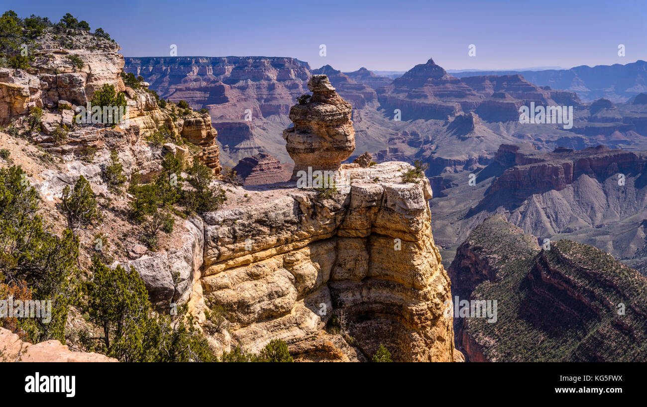 The USA, Arizona, Grand canyon National Park, South Rim, Ducking on A rock close Grandview Point - Stock Image