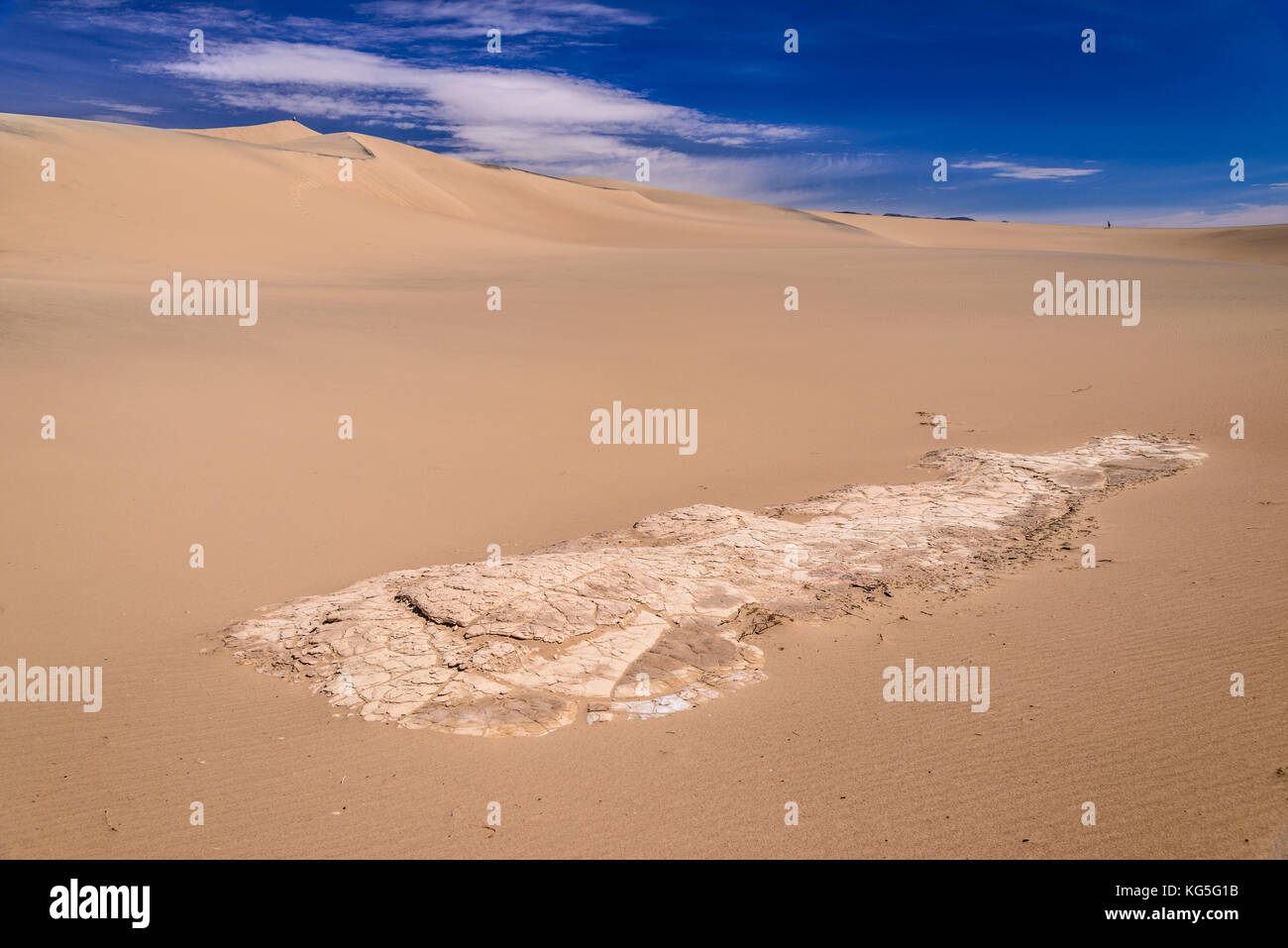 The USA, California, Death Valley National Park, Stovepipe Wells, Mesquite Flat Sand Dunes - Stock Image