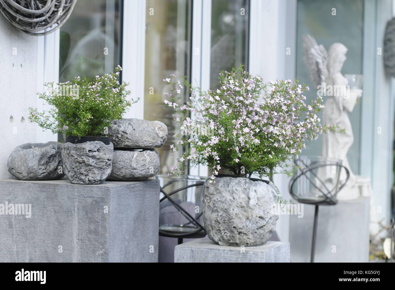 Potted plants in stone pots as garden decoration - Stock Image