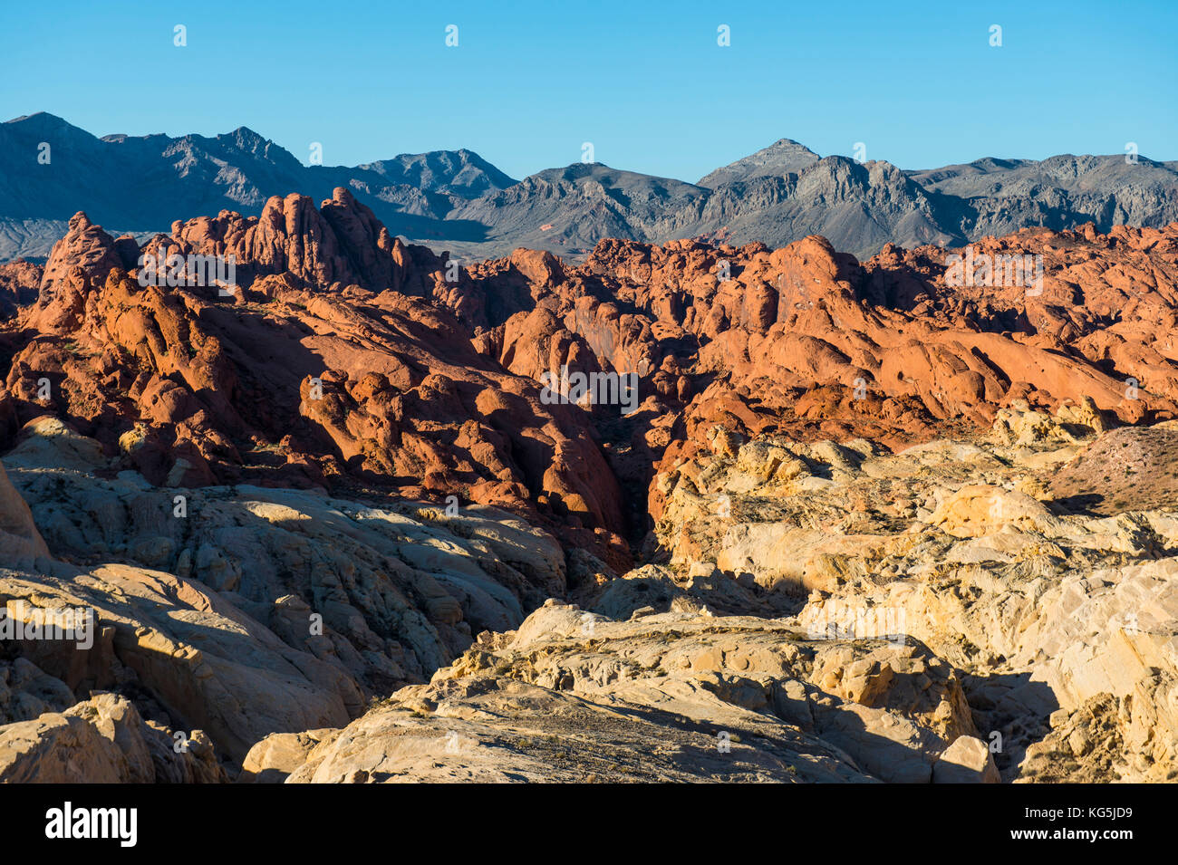 Overlook over the redrock sandstone formations in the Valley of fire, Nevada, USA - Stock Image