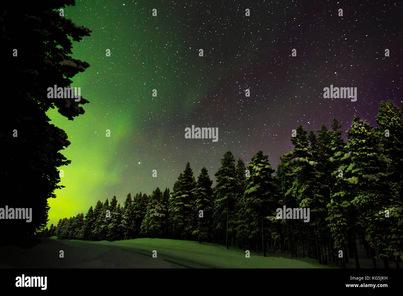 Aurora Borealis or Northern Lights, Lapland, Sweden - Stock Image