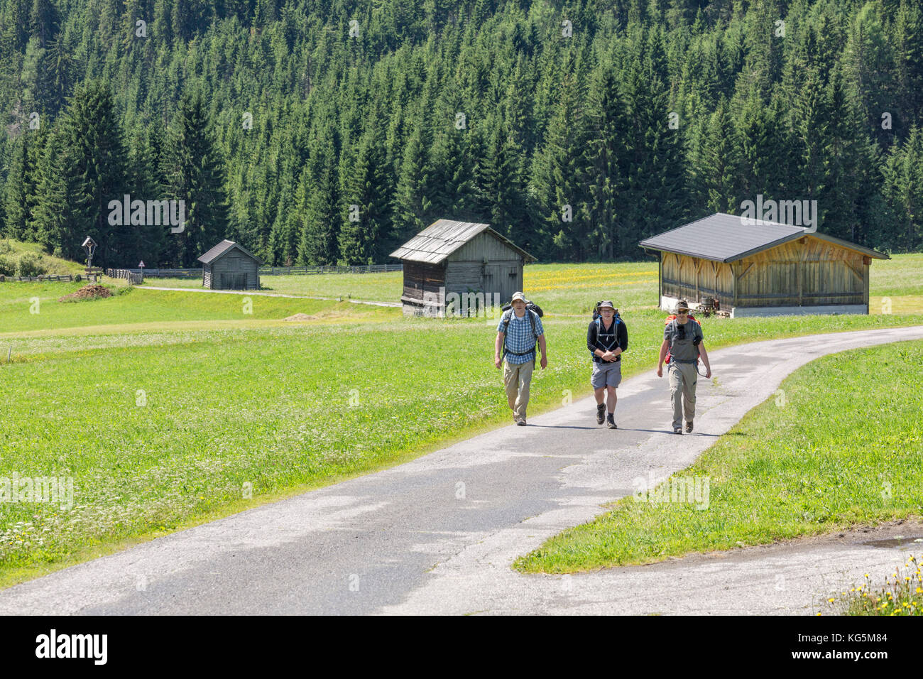 Hikers on an itinerary among the typical barns of the gail valley, Obertilliach, Tiroler Gailtal, East Tyrol, Tyrol, - Stock Image