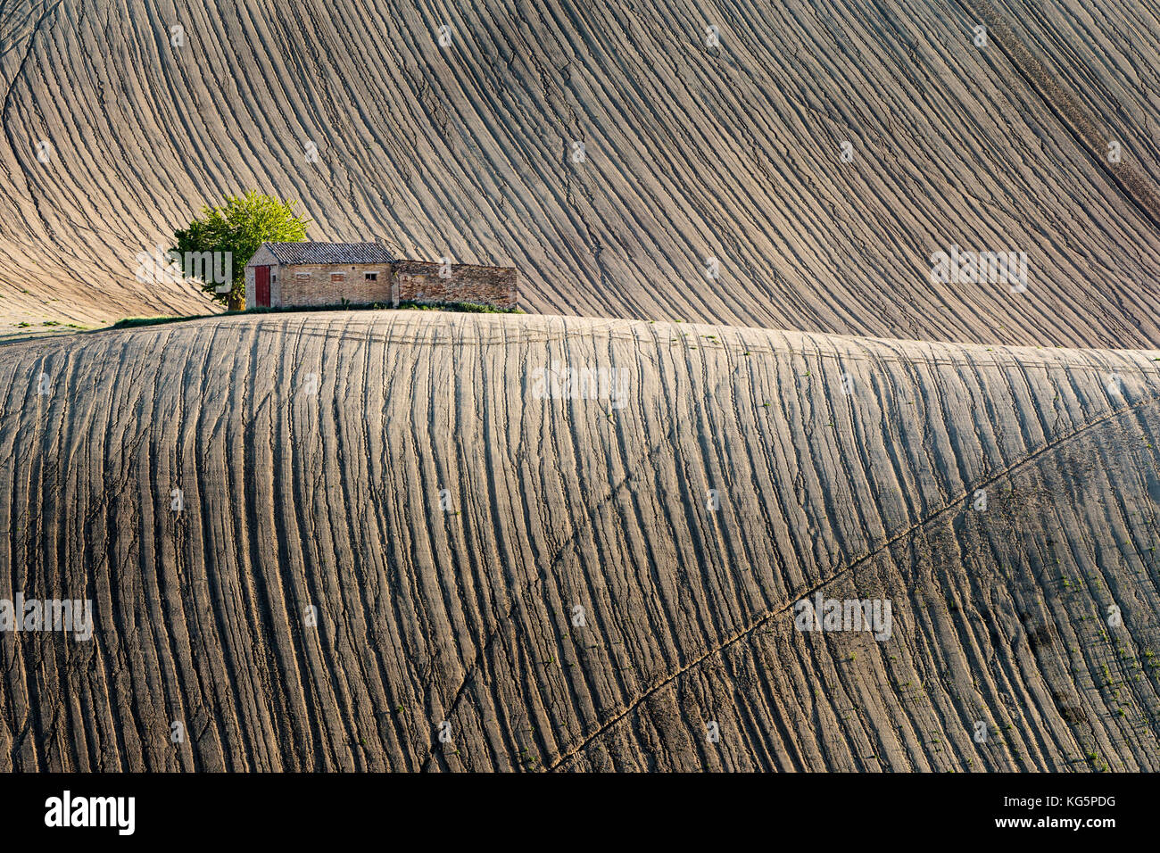 Typical rural landscape of the Marches region, italy - Stock Image