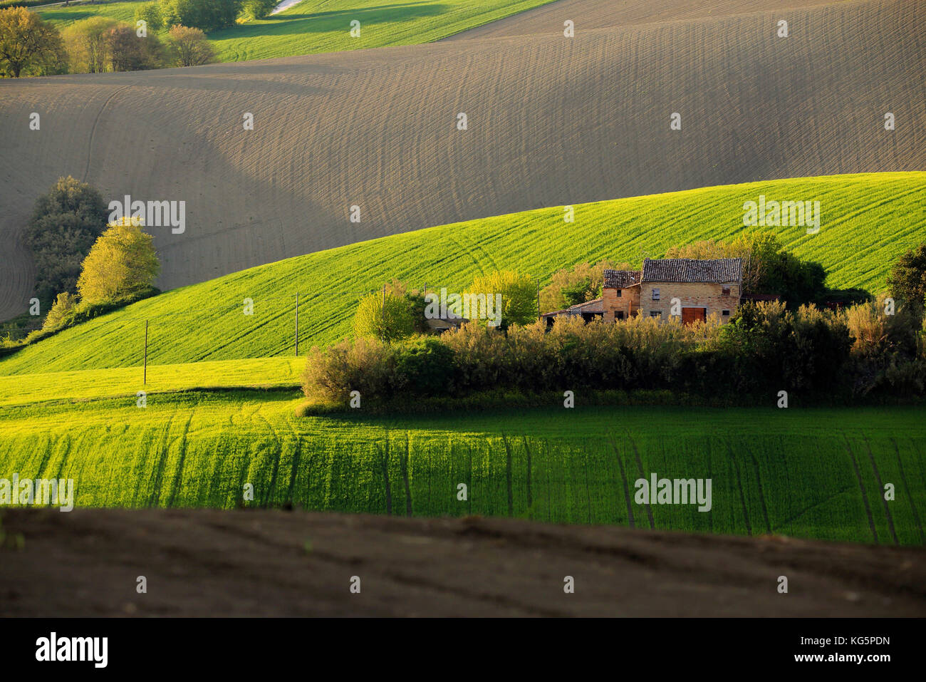 Countryside of Morrovalle village, Macerata district, Marches, italy - Stock Image