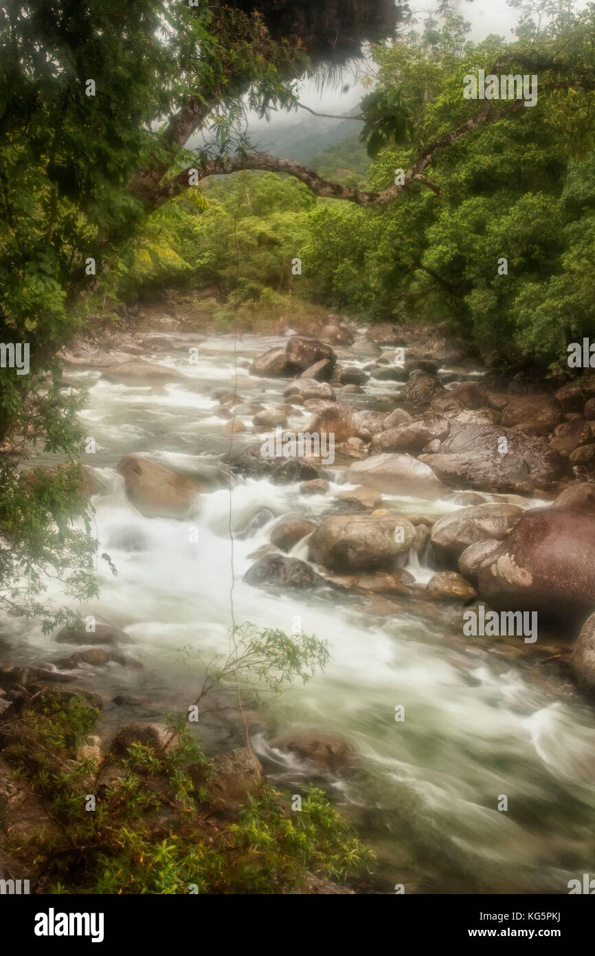 Rushing rainforest river, Mossman gorge, Australia - Stock Image