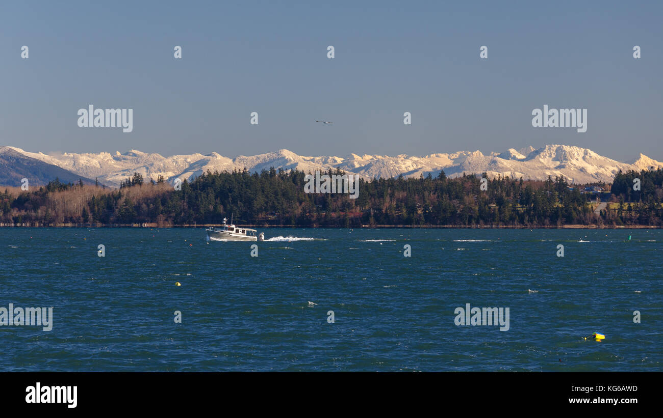 A winter view across Padilla Bay with boat passing by, evergreen trees by the shoreline, and snow covered mountains - Stock Image