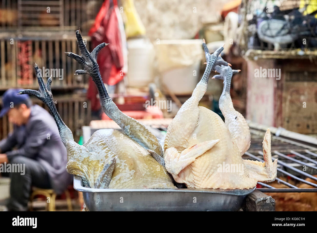 Lijiang, Yunnan, China - September 27, 2017: Close up picture of poultry on a tray at the local meat market. - Stock Image