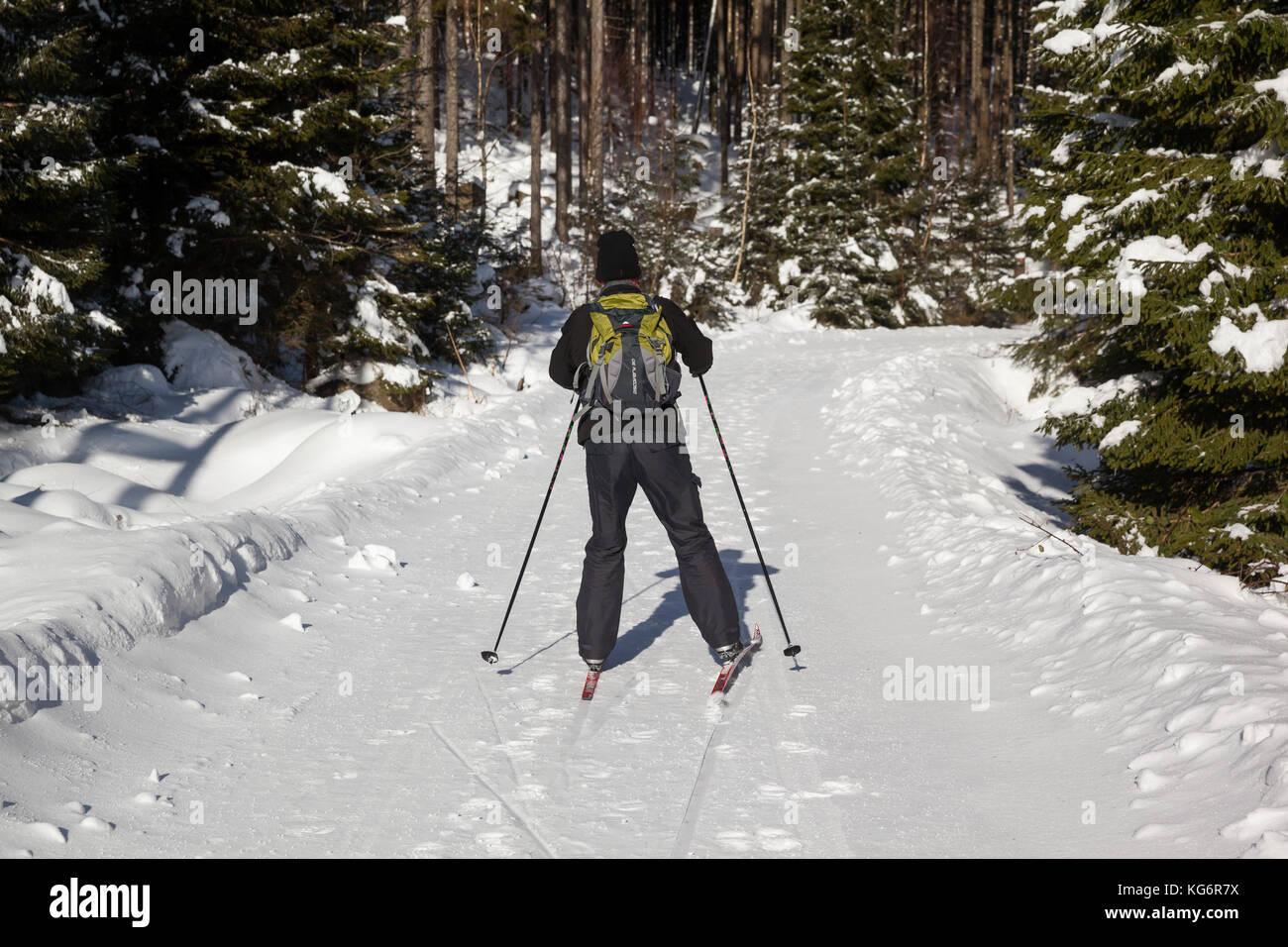 Ski Läufer im winterlichen Harz - Stock Image