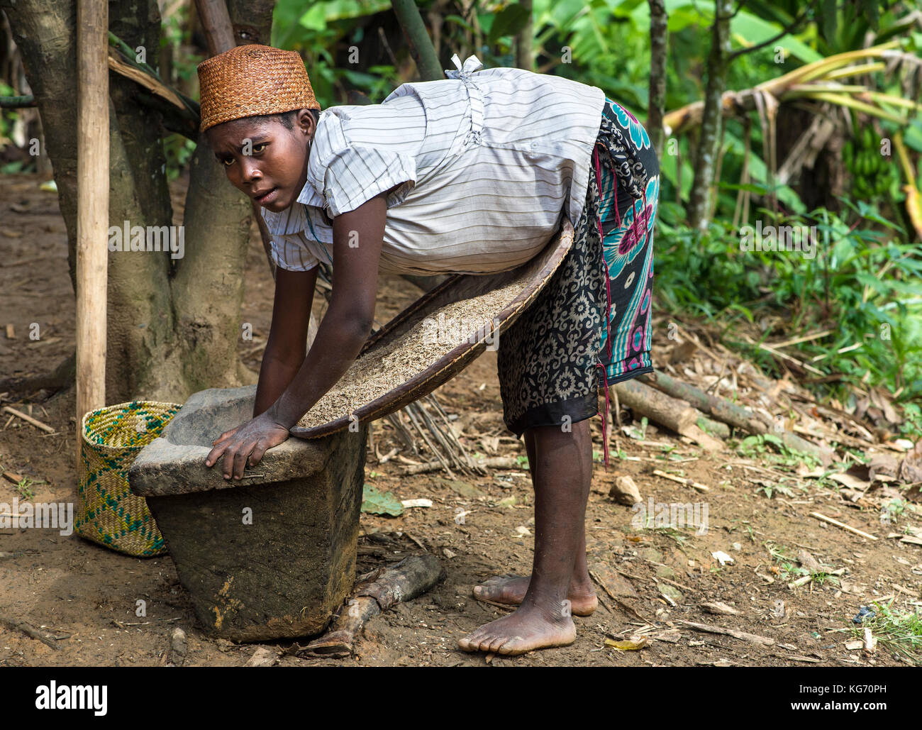 Woman filling a sieve with pounded rice, Ambavaniasy, Madagascar - Stock Image