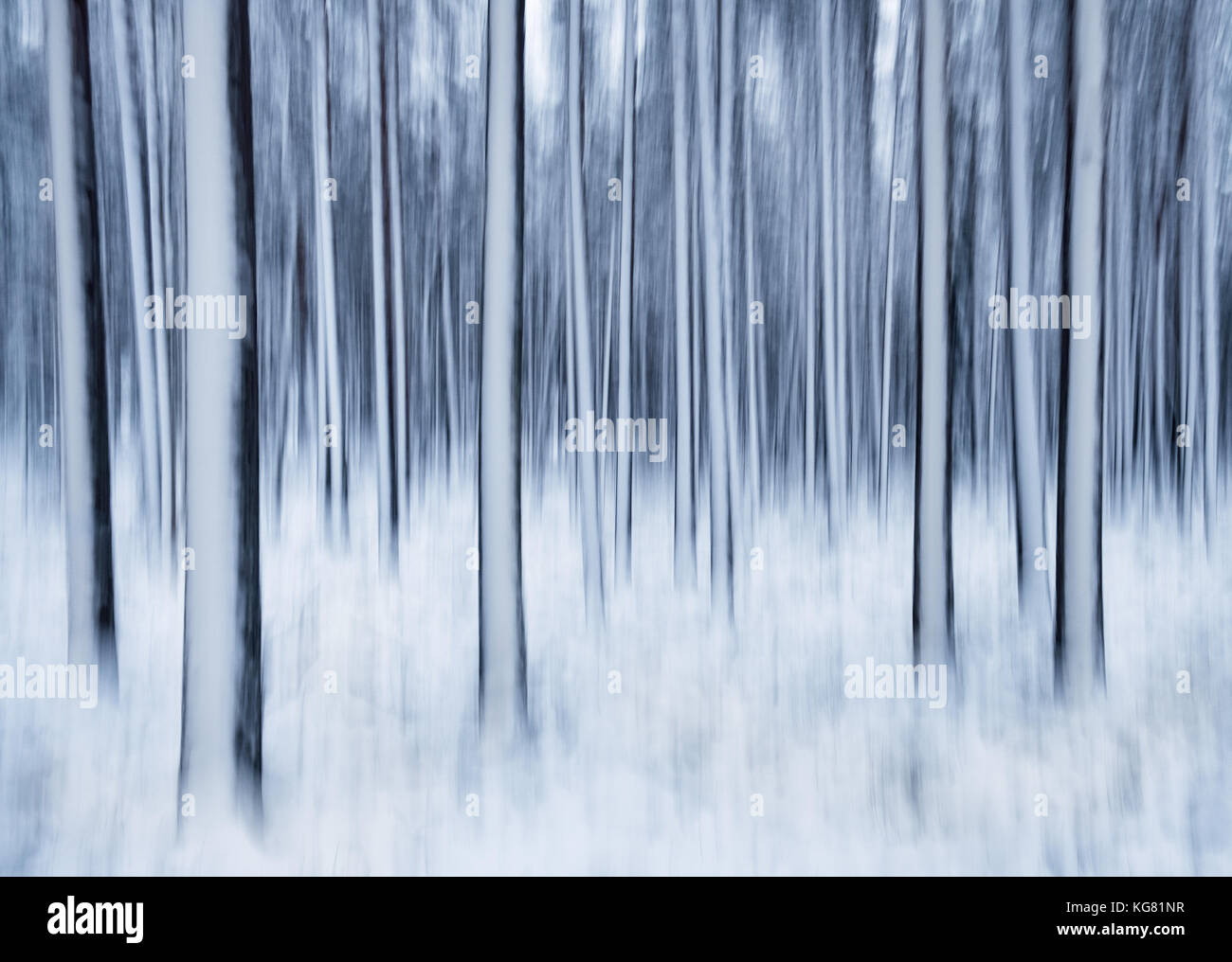 Winter landscape with trees and snow. This is taken by shaking camera little bit in long exposure. Stock Photo