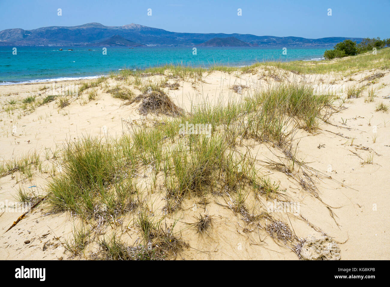 Dunes at Plaka beach, west side of Naxos, Cyclades, Aegean, Greece - Stock Image