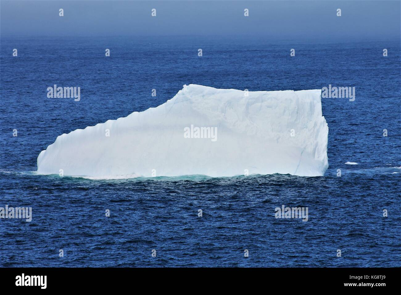 Iceberg in the Atlantic Ocean, Logy Bay-Middle Cove-Outer Cove, Newfoundland Labrador - Stock Image