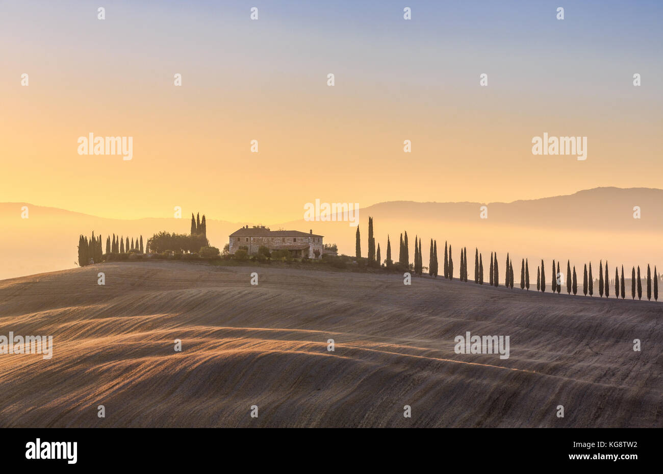 Tuscan landscape with cypress trees and farmstead at sunrise, dawn, San Quirico d'Orcia, Val d'Orcia, Tuscany, - Stock Image