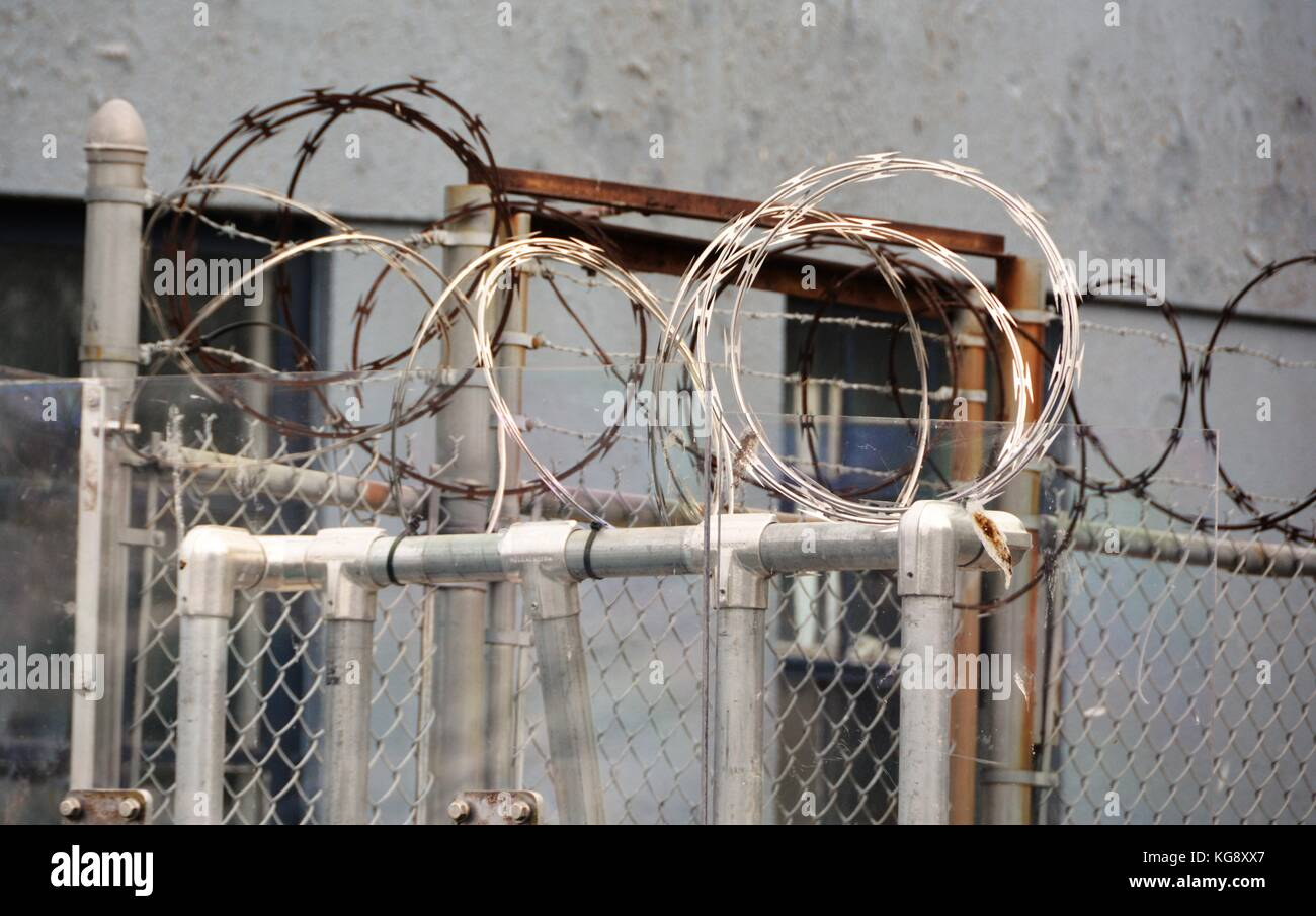 Razor Wire on Security Fence - Stock Image