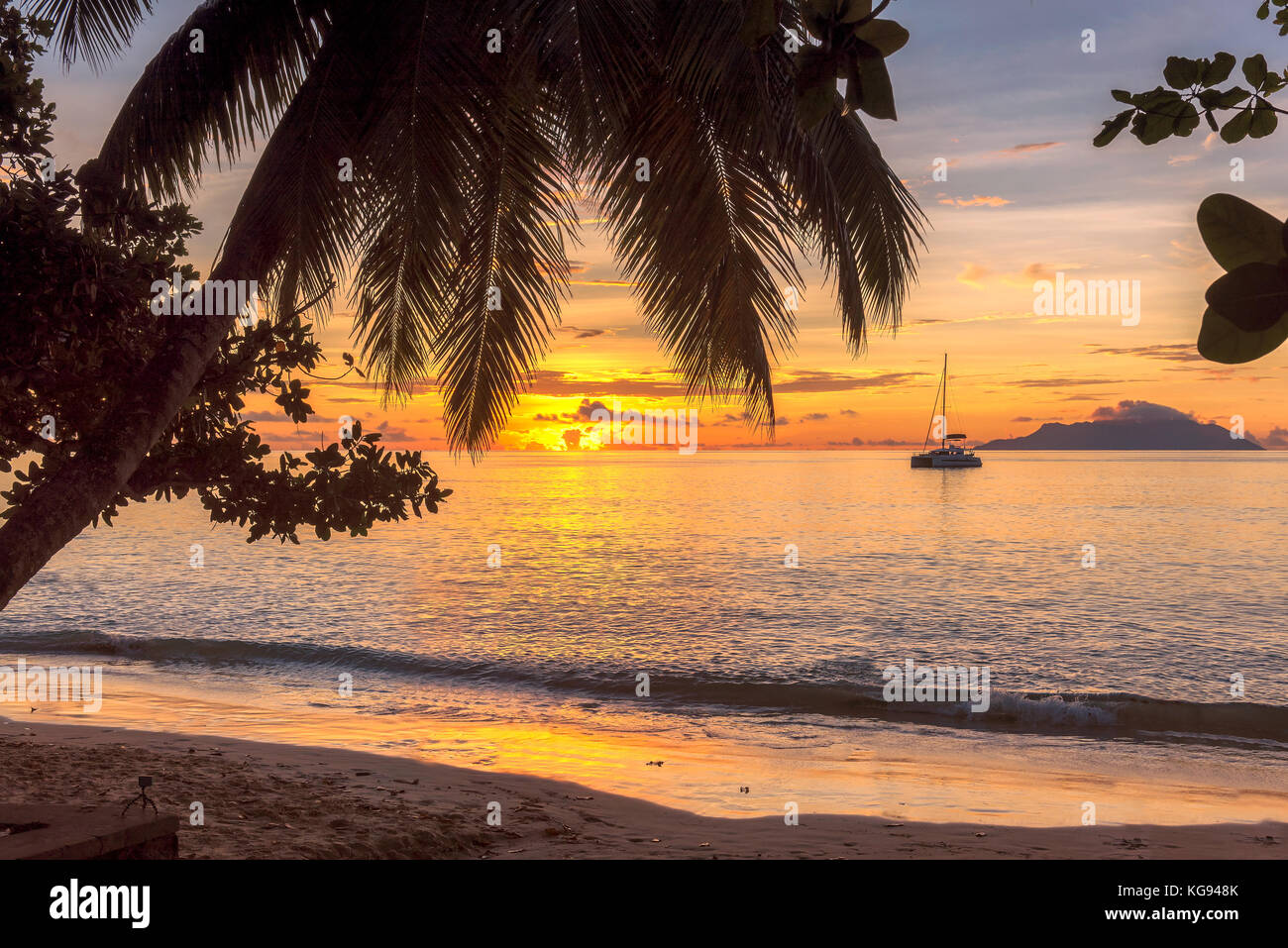 Tropical beach at sunset - Stock Image