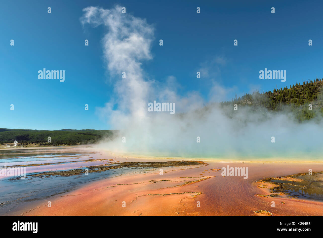 Grand Prismatic Spring in Yellowstone National Park - Stock Image