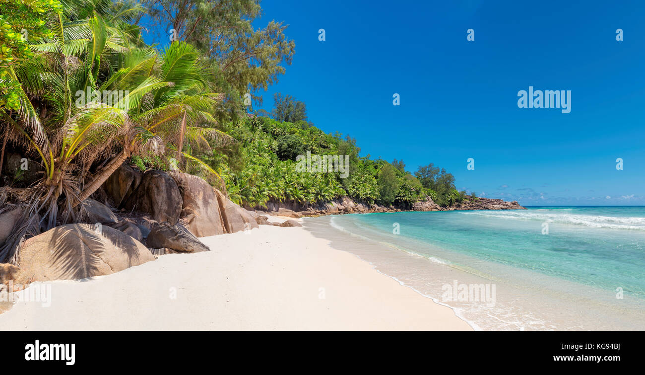 Untouched beautiful beach on tropical island - Stock Image