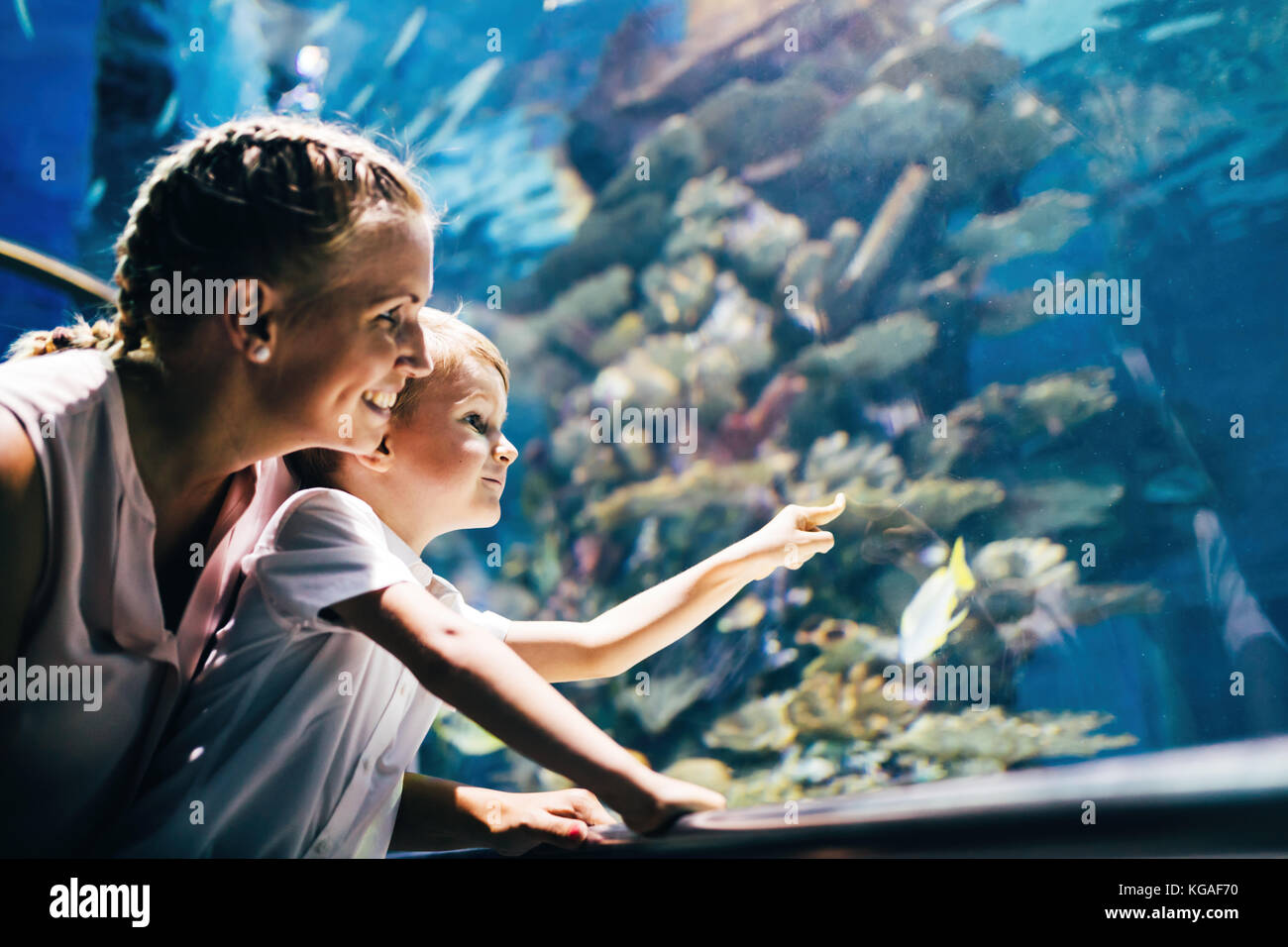 Mother and son watching sea life in oceanarium - Stock Image