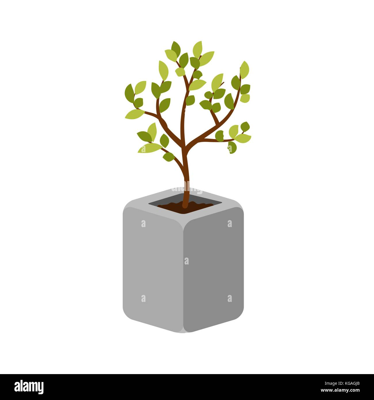 Tree outdoor plant in a concrete pot vector isolated. - Stock Image