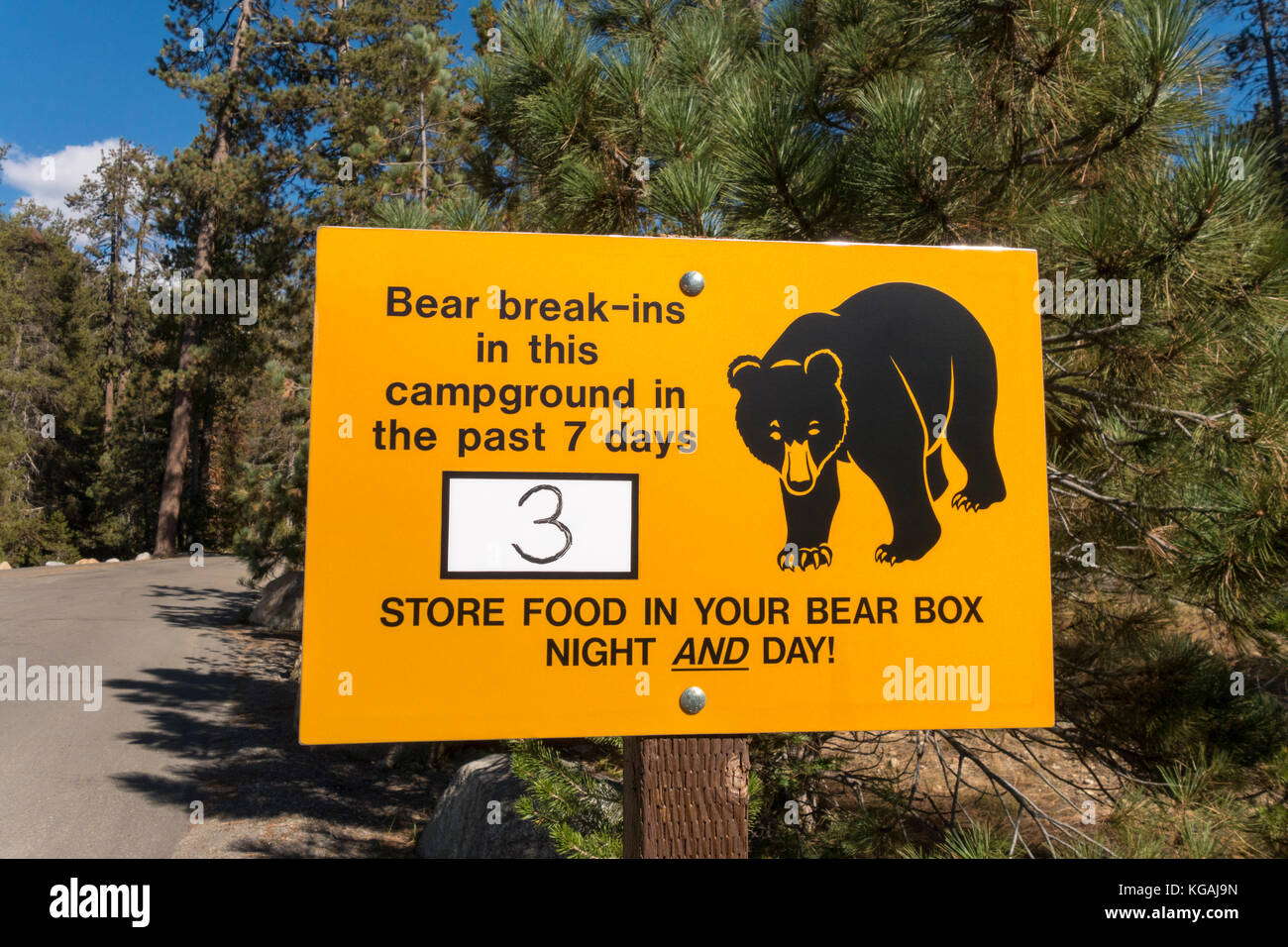 Bear warning sign at the entrance of Lodgepole Campground in Sequoia National Park - Stock Image