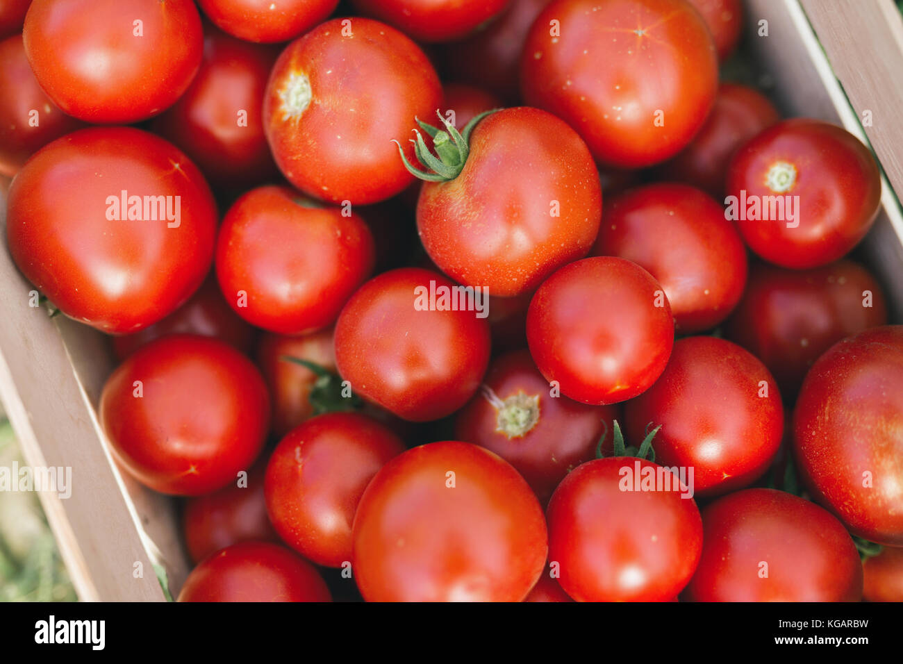 Picture of many tomatoes in wooden crate - Stock Image