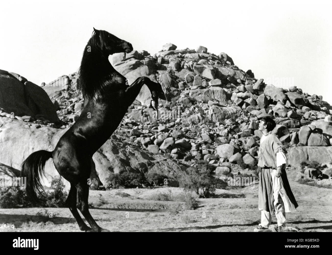Actor Kelly Reno in the movie The Black Stallion Returns, 1983 - Stock Image