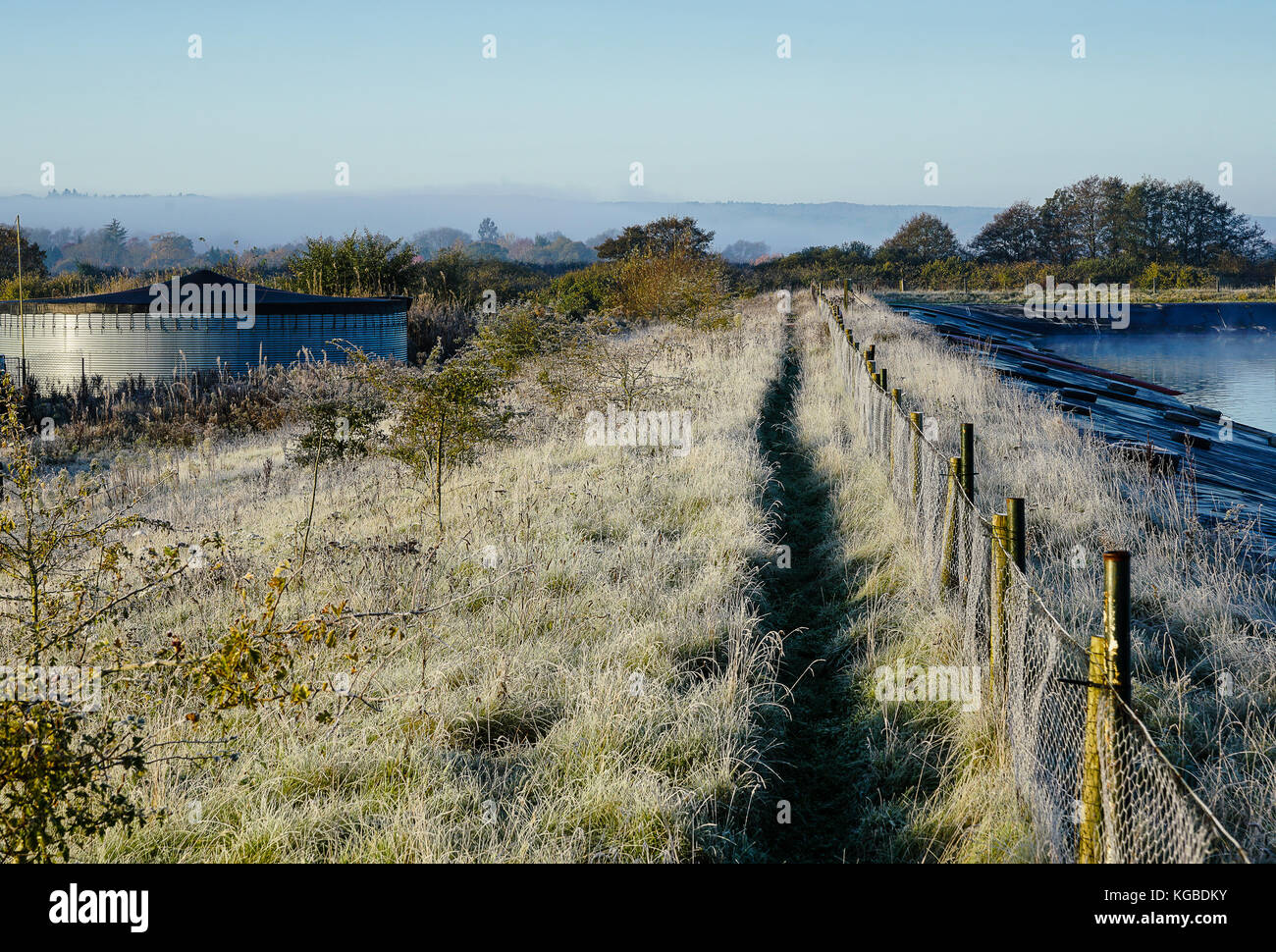 Tuesley Farm, Godalming. 06th November 2017. UK Weather. Clear skies led to overnight frost in the Home Counties. - Stock Image