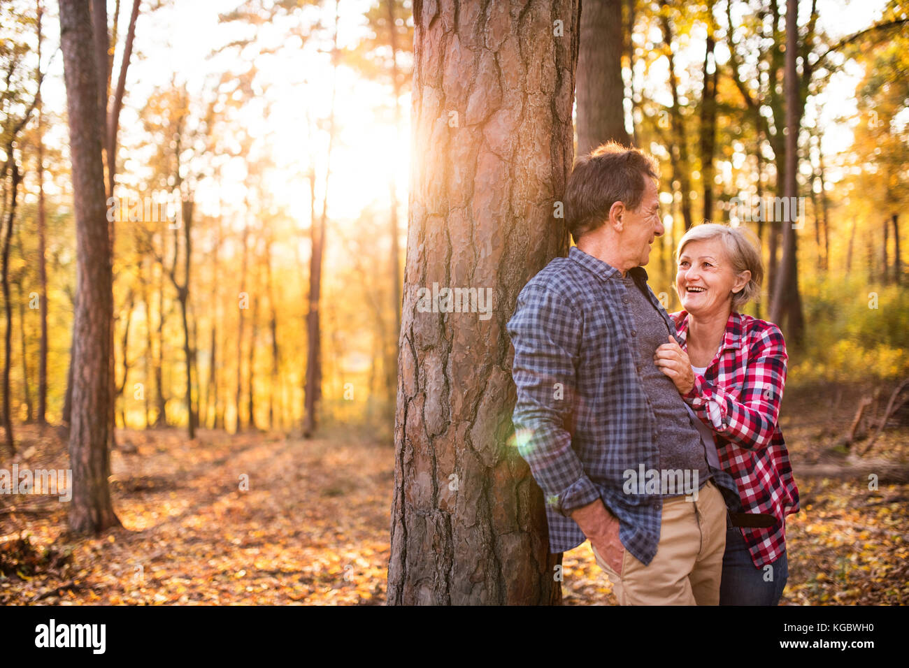 Senior couple on a walk in an autumn forest. - Stock Image