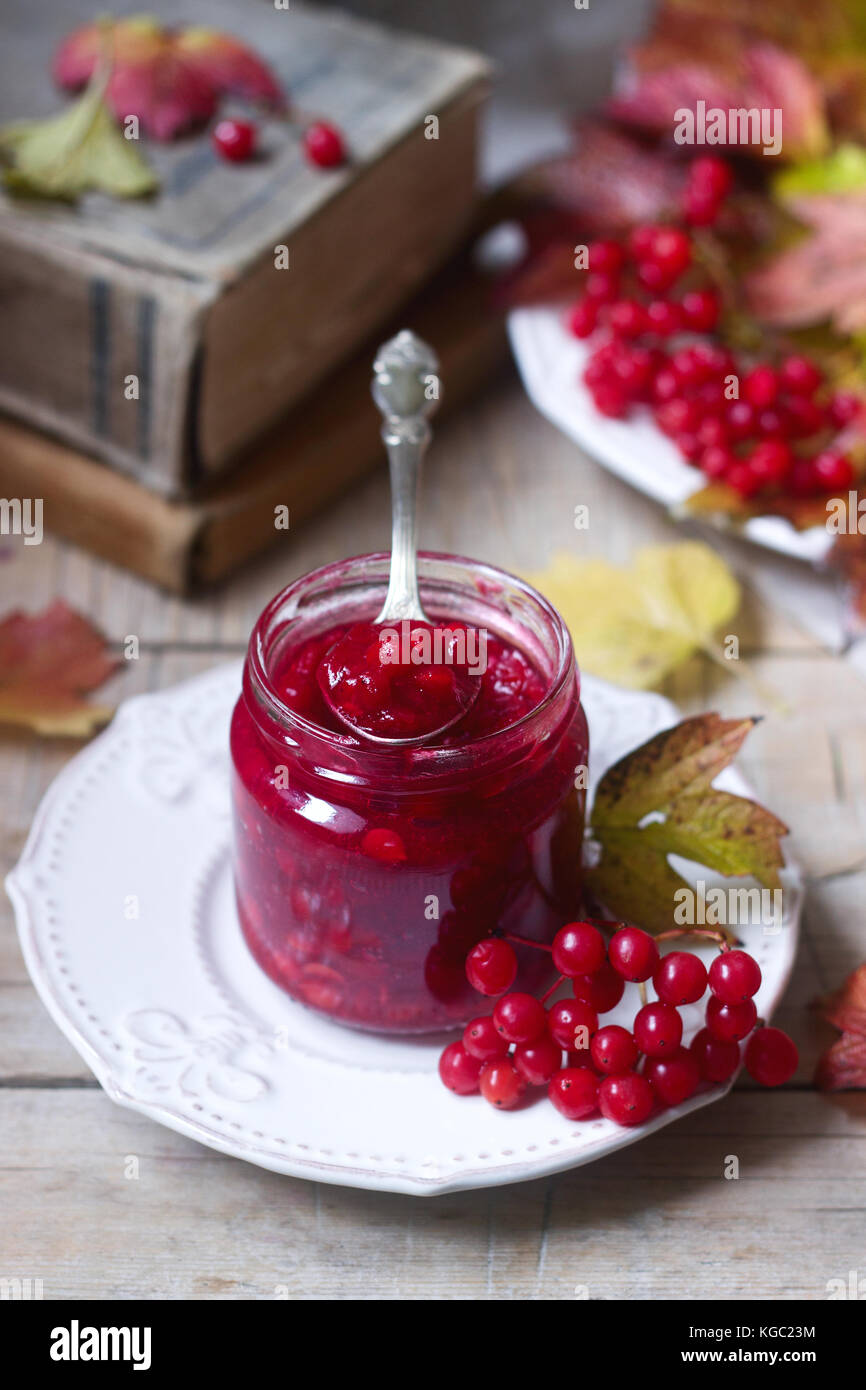 Berries of red viburnum with sugar and honey in a glass jar on a background with books, berries and leaves. - Stock Image