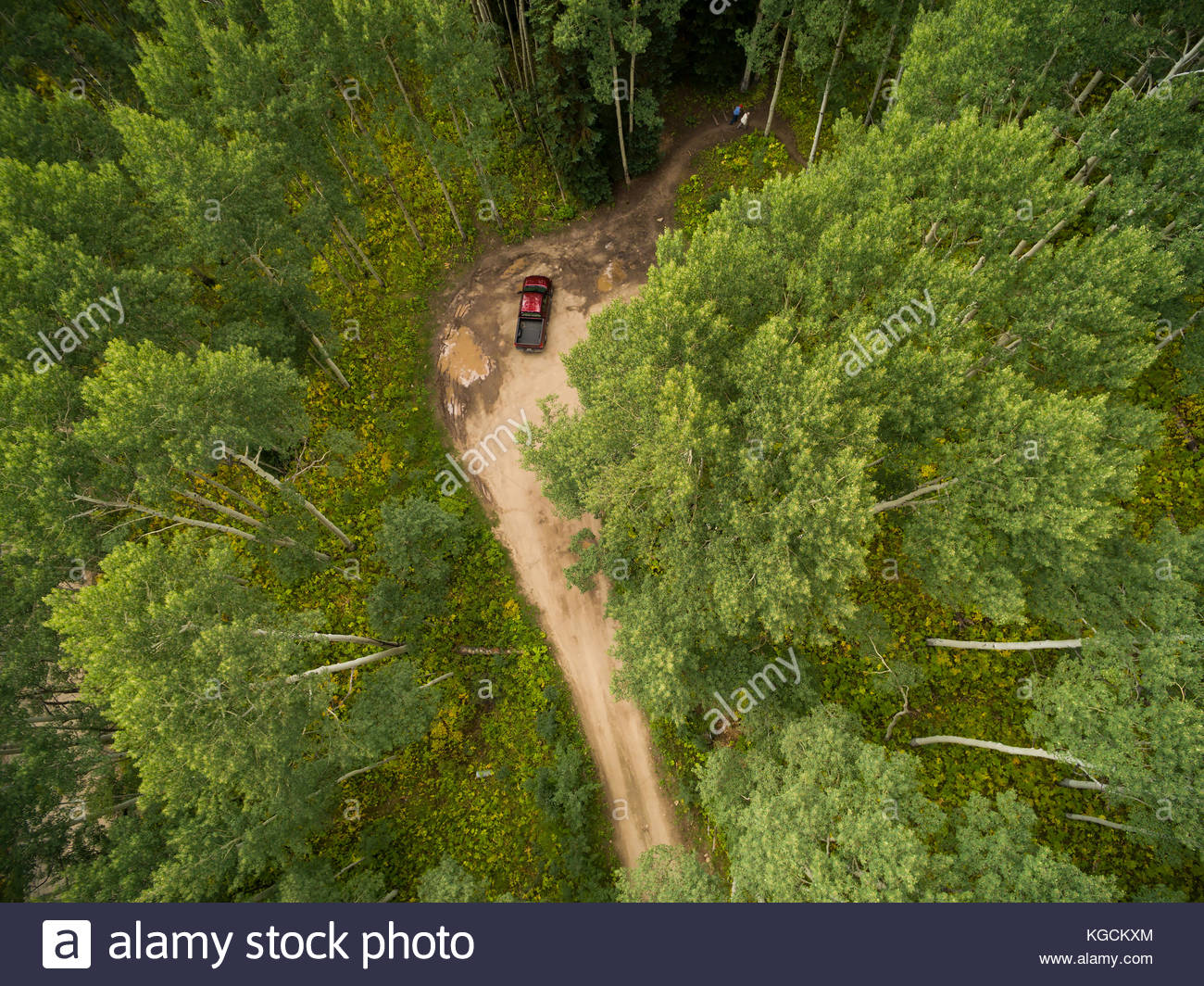 Overhead view of a couple leaving a parking area for a hike through a Colorado aspen forest. - Stock Image