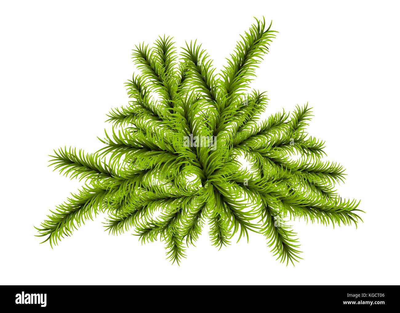 Christmas tree branch template - Stock Vector