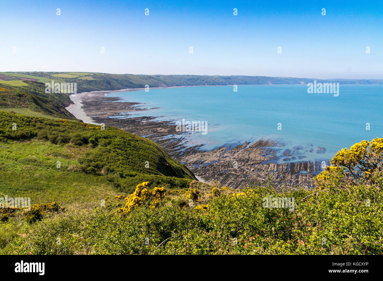 View Looking Down on Babbacombe Beach and North Devon Coastline at Low Tide. South West Coast Path, Near Bucks Mills, - Stock Image