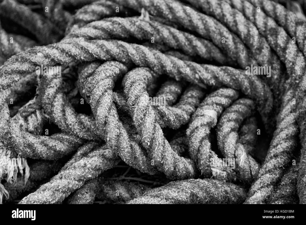 Seile in einem Fischerhafen - Stock Image