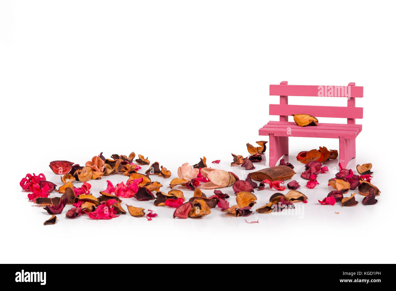 Close up detailed view of pink bench, dried flowers and leaves around with romantic concept, isolated on white background. - Stock Image