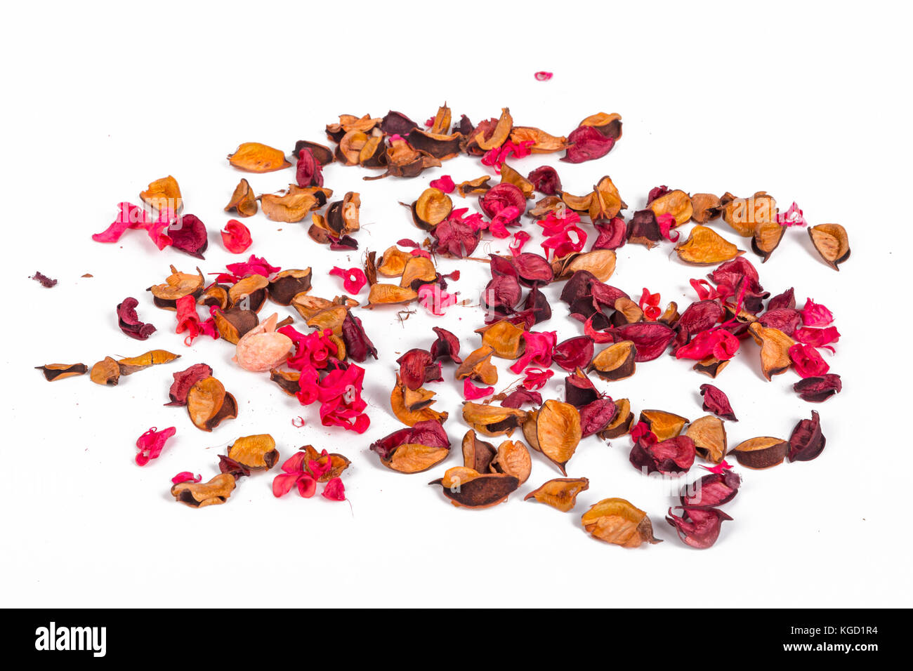 Close up detailed view of dried flowers and leaves around with romantic concept, isolated on white background. - Stock Image