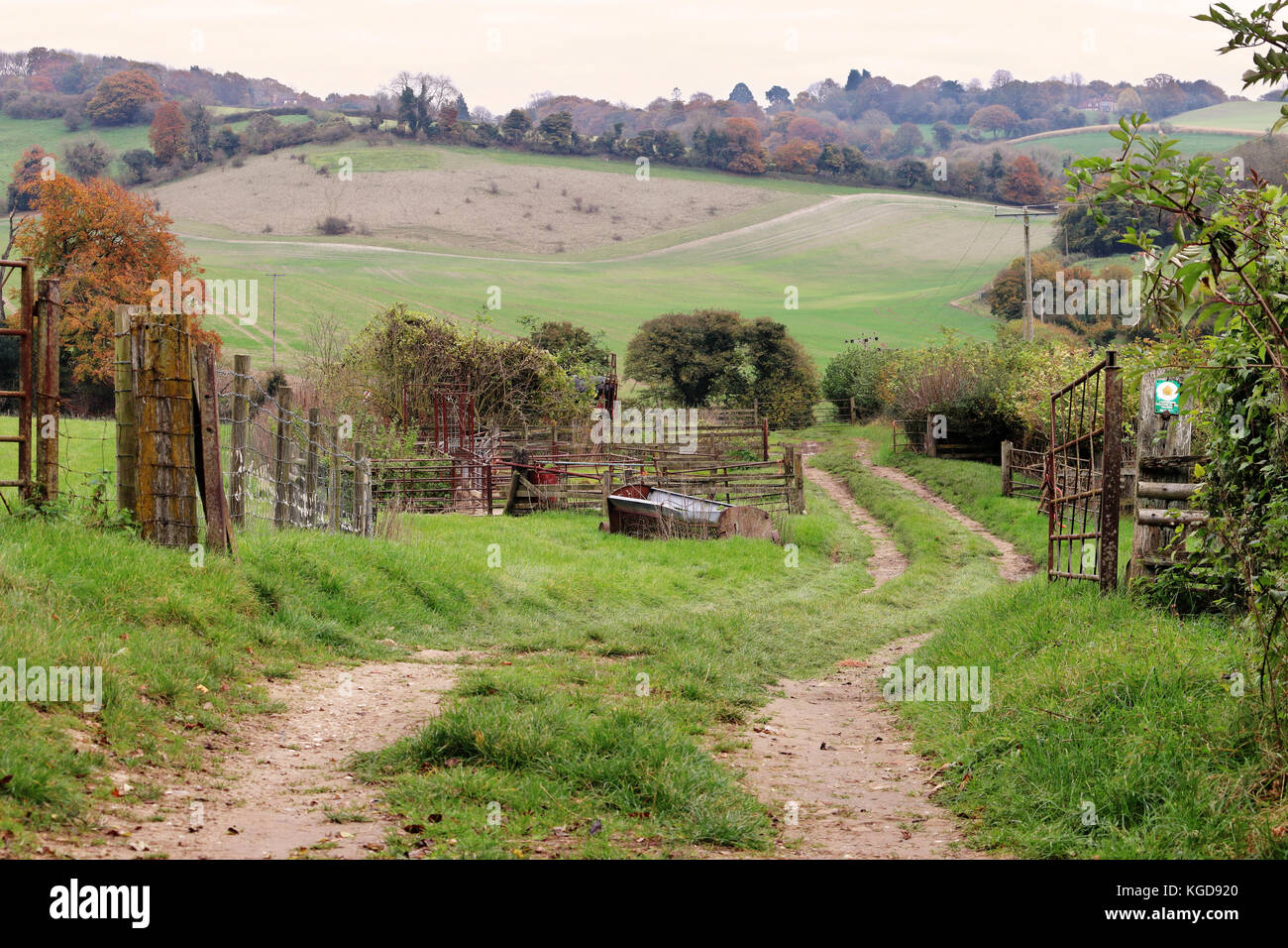 Autumn Landscape in the Chiltern Hills in England with Farm track between fields - Stock Image