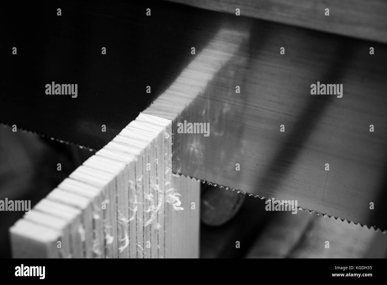 Saw cutting through a piece of wood. The wood reflects off the surface of the saw blade. - Stock Image